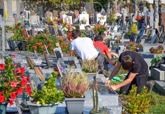 Journée citoyenne : mission désherbage au cimetière de Questembert
